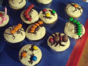gâteau anniversaire Koh Lanta