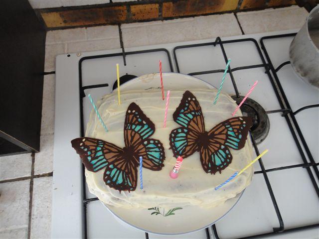 gateau anniversaire papillon