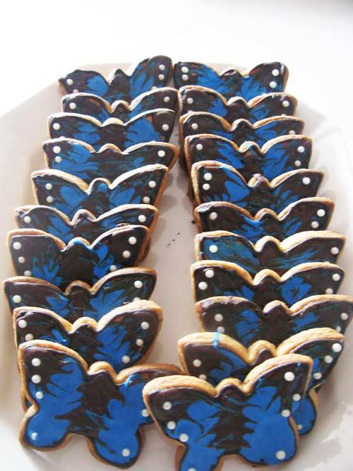 chasse au tresor des papillons
